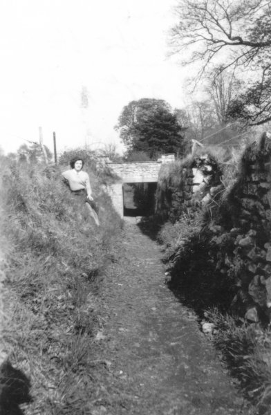 Another view from the 1950s showing the Ha-Ha close to the bridge over which passed the drive to Timsbury House