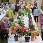 Flower show two