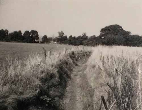 A view along the Ha-Ha towards The Avenue in the 1950s