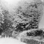 The-Avenue